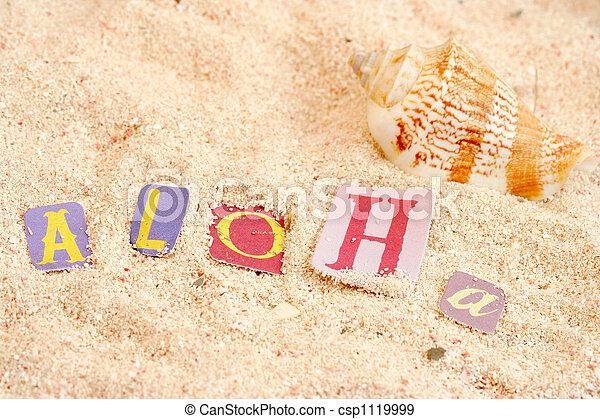 La playa de Hawaii - csp1119999