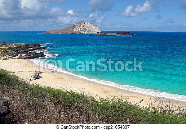 Playa hawaiana - csp21654337