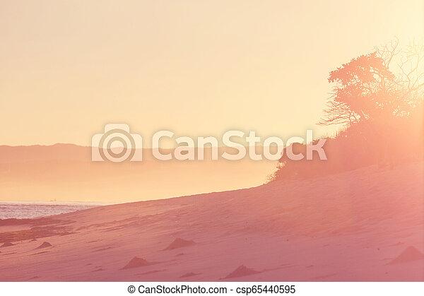 Playa hawaiana al amanecer - csp65440595