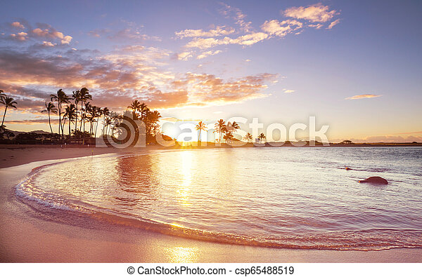 Playa hawaiana al amanecer - csp65488519