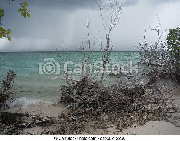 Playa nublada - csp50212250