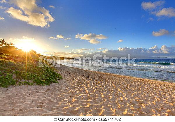 Un atardecer tropical en Oneloa Beach, Maui, Hawaii - csp5741702