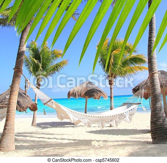 Hamaca de playa caribeña y palmeras - csp5745602