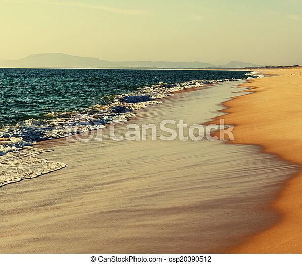 Playa - csp20390512