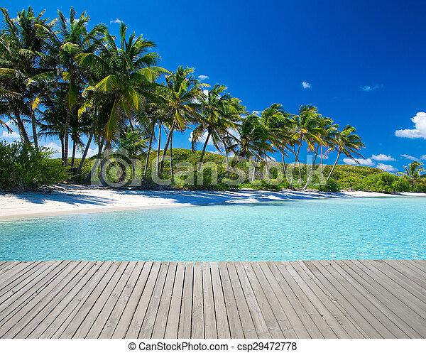 Playa - csp29472778