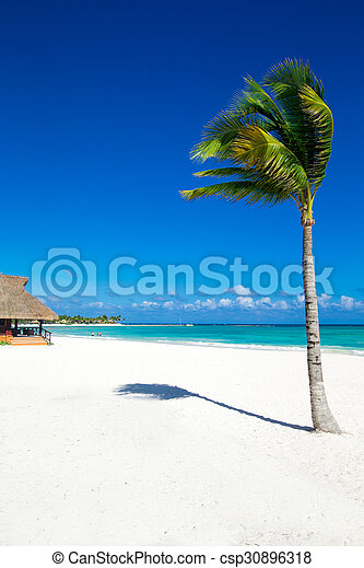 Playa - csp30896318