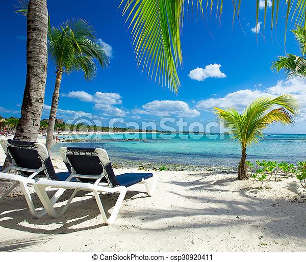 Playa - csp30920411