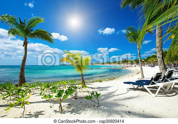 Playa - csp30920414