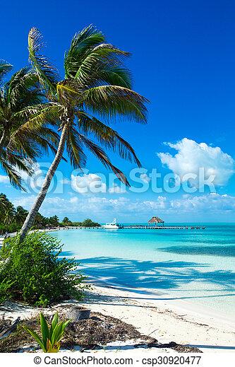 Playa - csp30920477