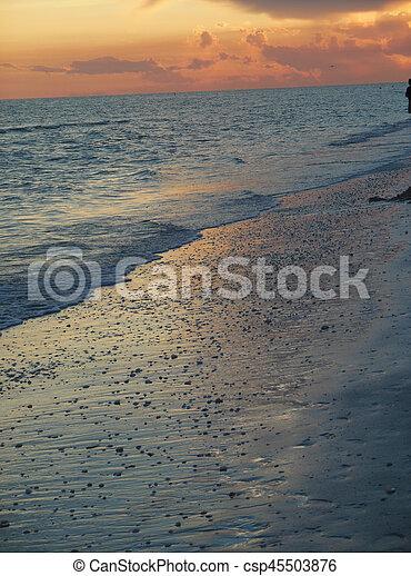 Playa - csp45503876