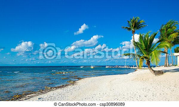 Playa - csp30896089