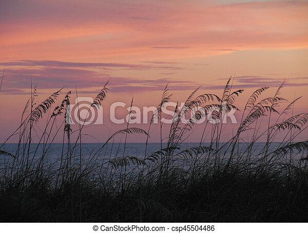 Playa - csp45504486