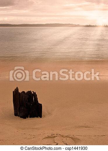Amanecer en la playa - csp1441930