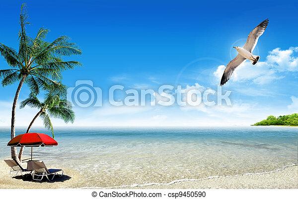 Playa tropical y palmeras - csp9450590