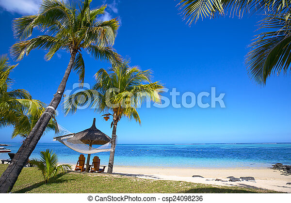 Playa tropical - csp24098236