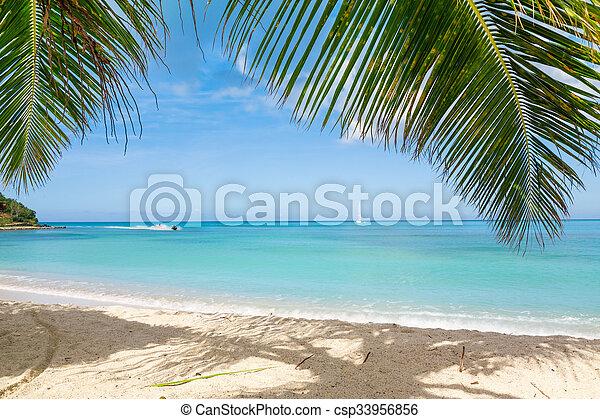 Playa tropical - csp33956856