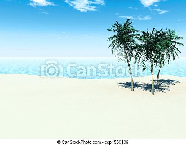 Playa tropical - csp1550109