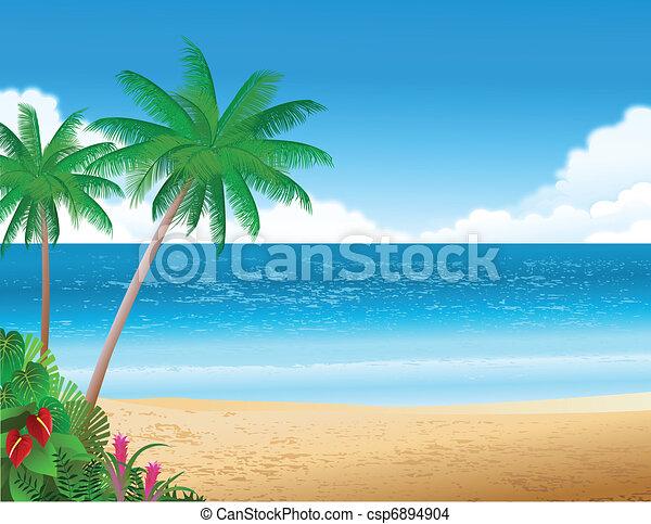 Playa tropical - csp6894904