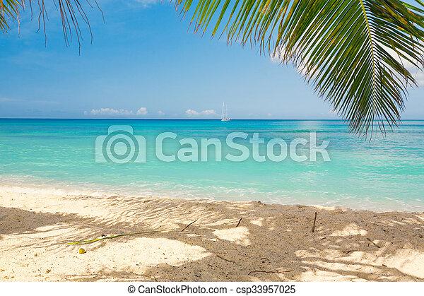 Playa tropical - csp33957025