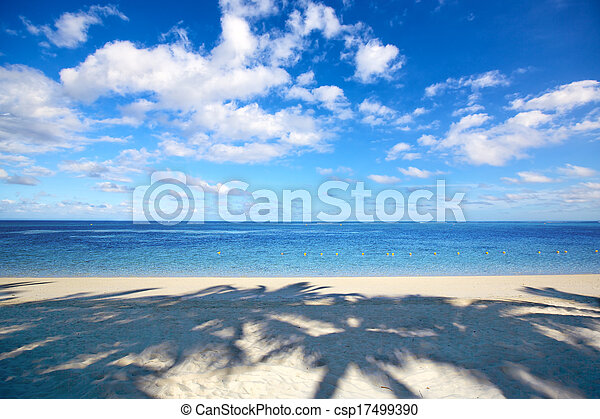Playa tropical - csp17499390