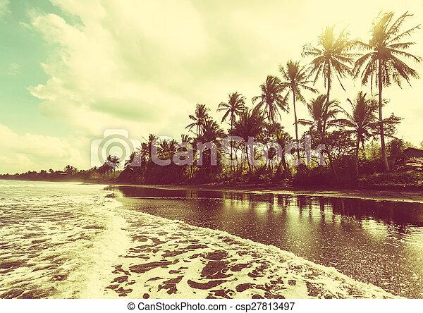 playa tropical - csp27813497
