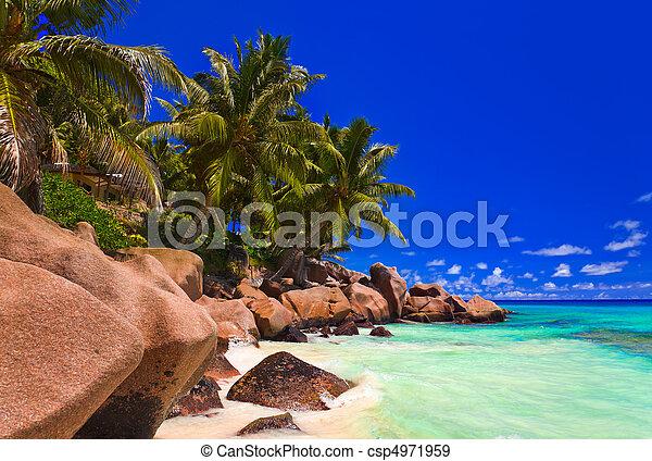 Playa tropical - csp4971959
