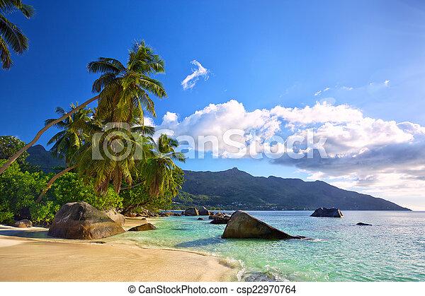 Playa tropical - csp22970764