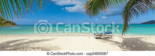 Playa tropical - csp24805067