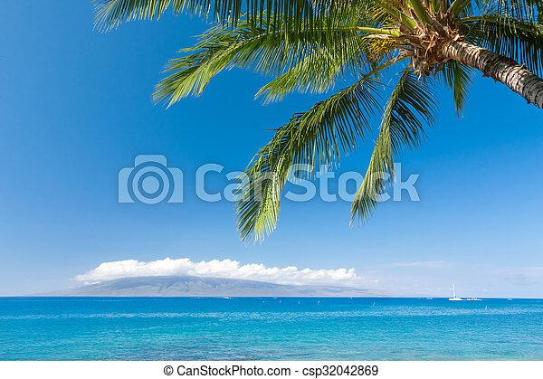 Playa tropical - csp32042869