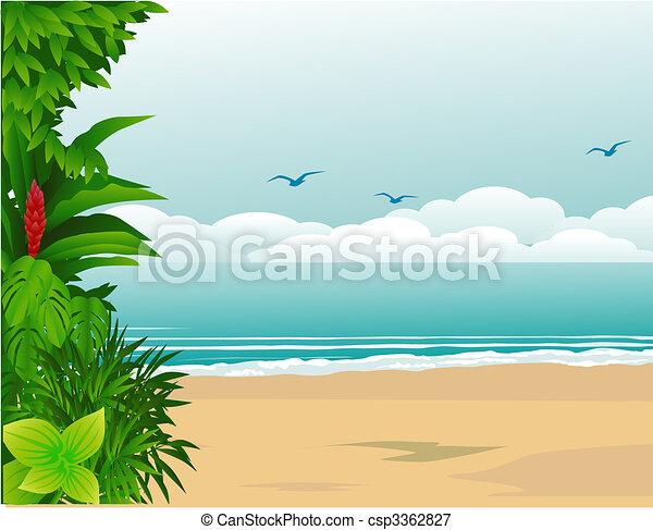 Playa tropical - csp3362827