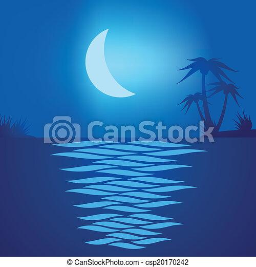 Playa tropical por la noche - csp20170242