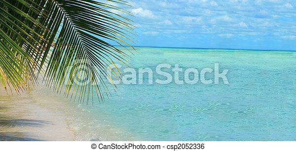 Trasfondo de playa tropical - csp2052336