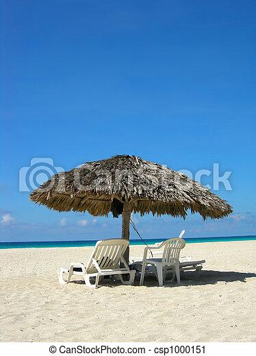 Playa tropical - csp1000151