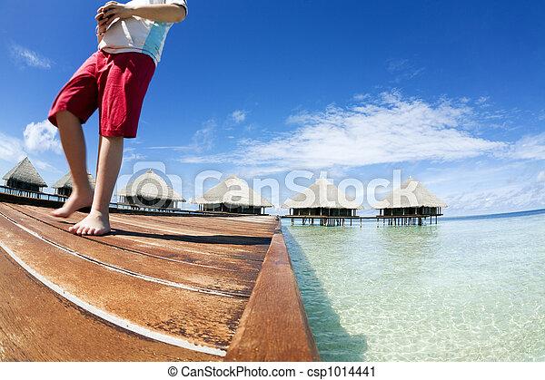 Playa tropical - csp1014441