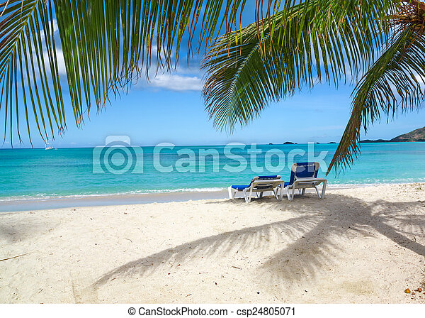 Playa tropical - csp24805071