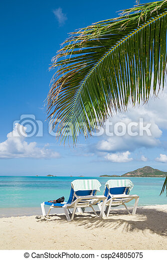 Playa tropical - csp24805075