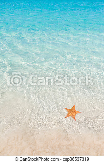 Playa tropical - csp36537319