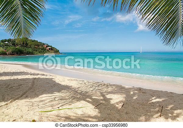 Playa tropical - csp33956980