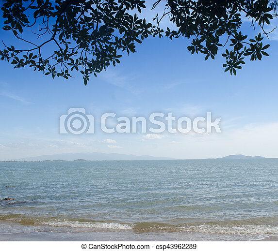 Playa tropical - csp43962289