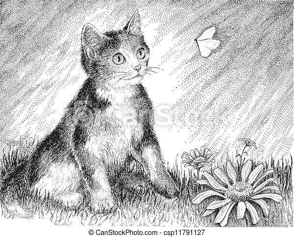 Playful Calico Kitten - csp11791127