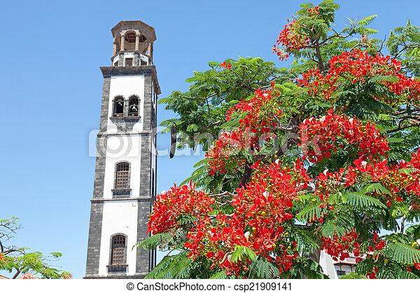 plaza de la iglesia in santa cruz - csp21909141