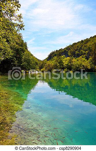 plitvice, 克羅地亞, 國家公園, 湖 - csp8290904