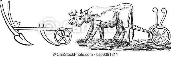Plough vintage engraving - csp6391311