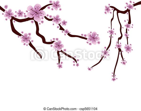 plum blossom  - csp5651104