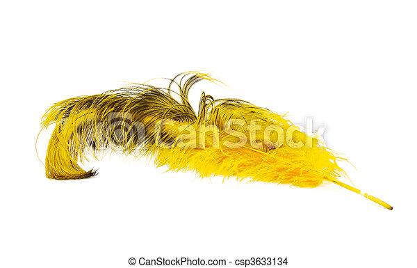 Una pluma de avestruz amarilla brillante en un fondo blanco - csp3633134