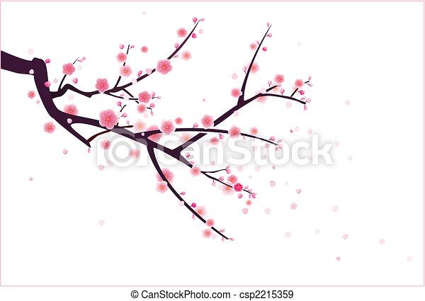plum/cherry blossom - csp2215359