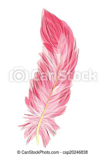 Plume Flamant Rose