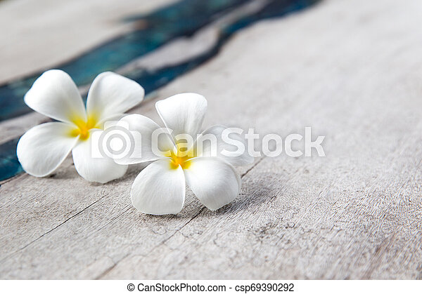 Plumeria flowers on wooden textured background with blue glass. - csp69390292