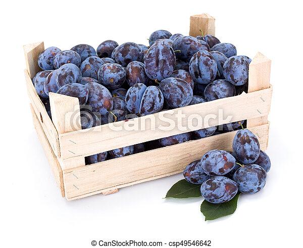 Plums (Prunus) in wooden crate - csp49546642