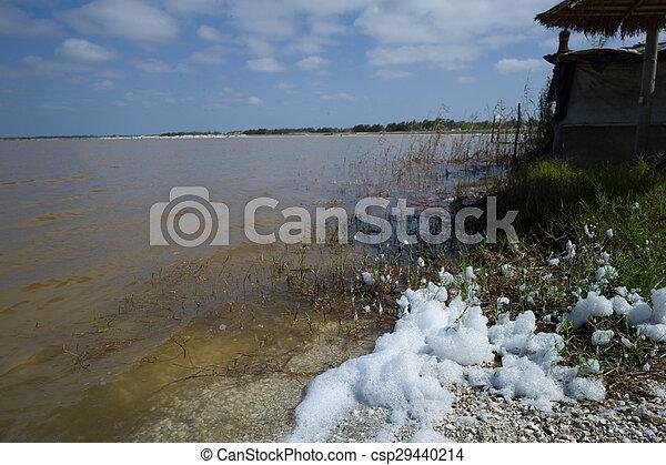 Pnk lake, Senegal - csp29440214